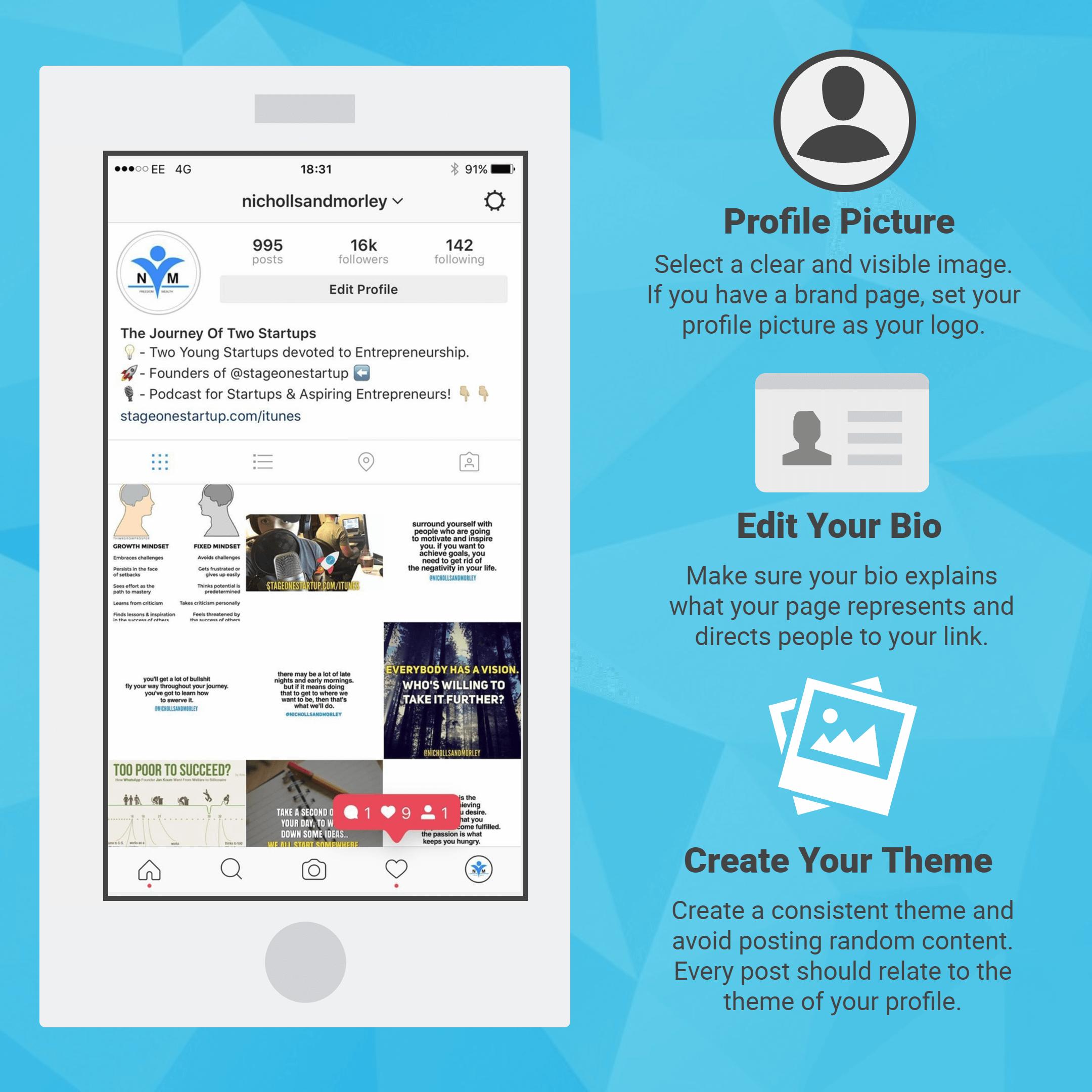 Instagram Theme Infographic