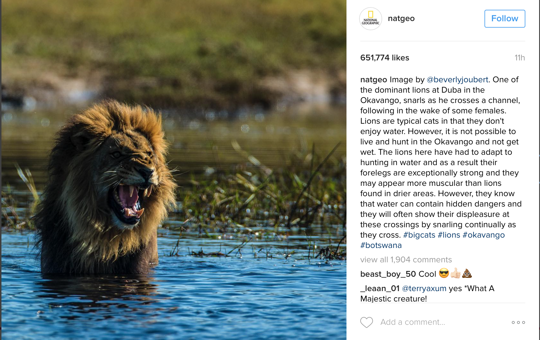 marketer's guide to Instagram hashtags