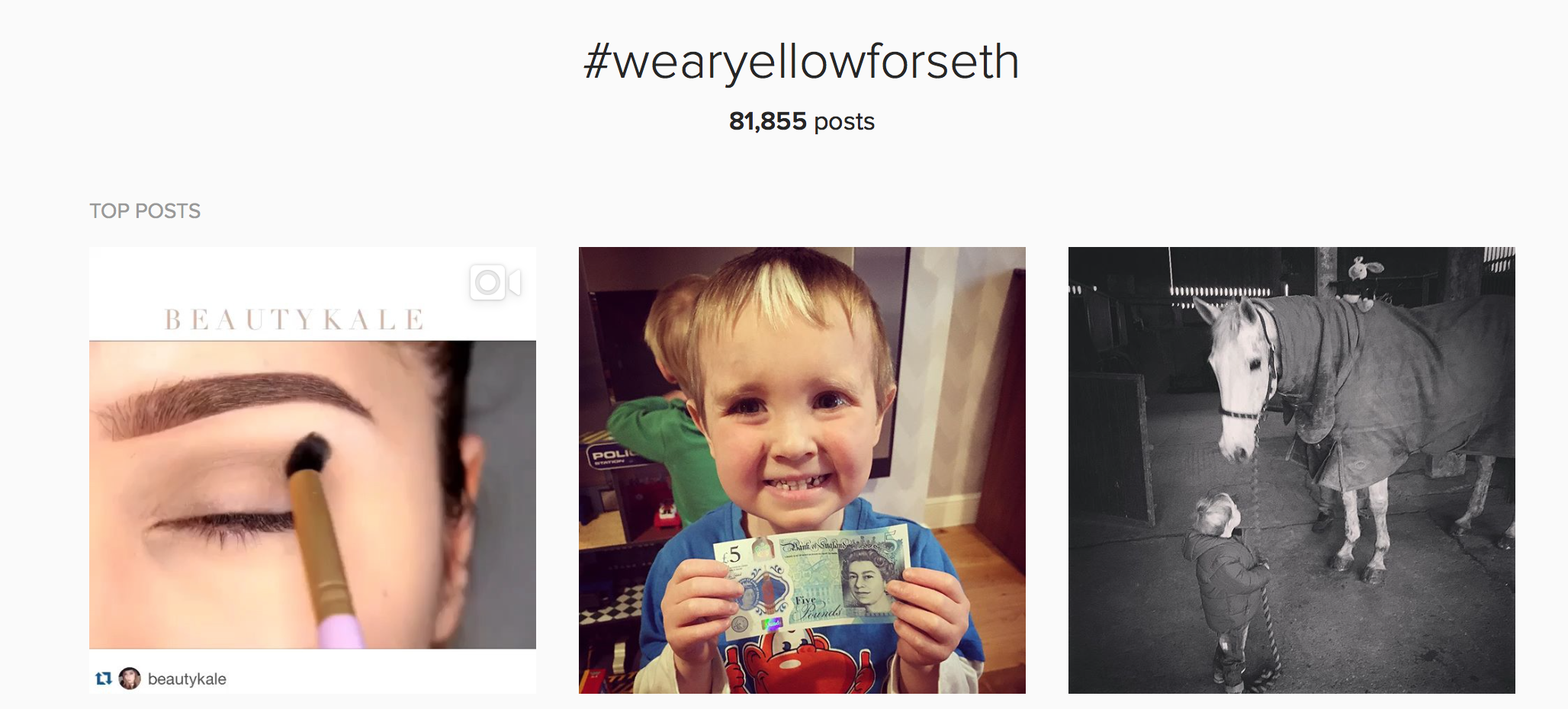 instagram hashtag results